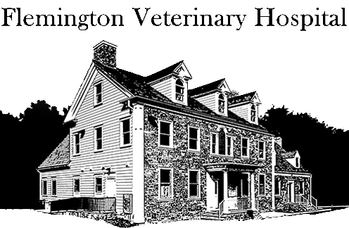 Flemington Veterinary Hospital Rendering